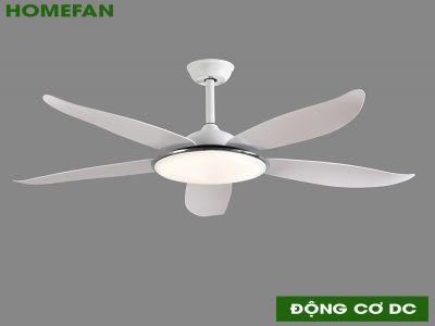 Quạt trần đèn trang trí HomeFan HL-Fan806