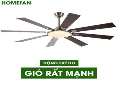 Quạt trần đèn trang trí HomeFan HL-Fan809