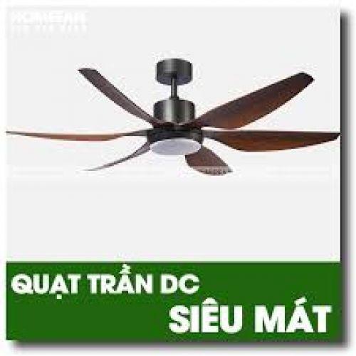 Quạt trần trang trí HomeFan HL-Fan696